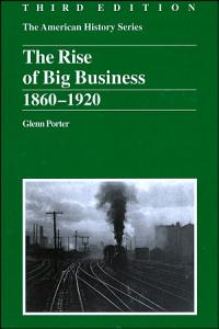 The Rise of Big Business Book