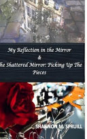 My Reflection in the Mirror   the Shattered Mirror PDF