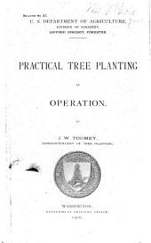 Practical tree planting in operation