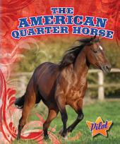 American Quarter Horse, The