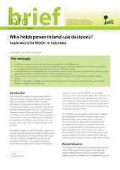 Who holds power in land-use decisions?: Implications for REDD+ in Indonesia