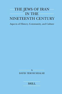 The Jews of Iran in the Nineteenth Century PDF