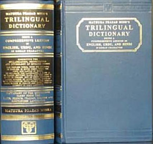 A Trilingual Dictionary PDF
