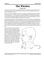 Roald Dahl Literature Activities  The Witches PDF