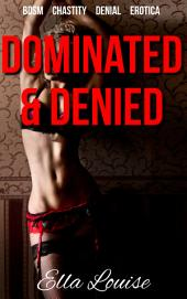 Dominated & Denied (The Kink Diary, #1)