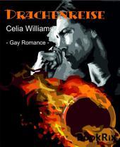 Drachenreise: Gay Fantasy Romance