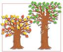 Classroom Tree  Bulletin Board