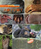 大腳ㄚ.小腳ㄚ: 親親自然186