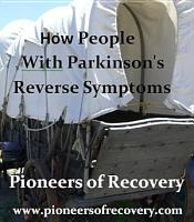 Pioneers of Recovery PDF