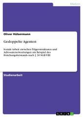 Gedoppelte Agenten: Soziale Arbeit zwischen Trägerstrukturen und Adressatenerwartungen am Beispiel des Erziehungsbeistands nach § 30 SGB VIII