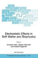 Electrostatic Effects in Soft Matter and Biophysics PDF