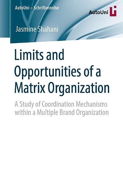 LIMITS AND OPPORTUNITIES OF A MATRIX ORGANIZATION PDF