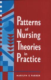 Patterns Of Nursing Theories In Practice