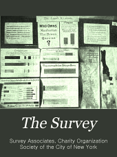 The Survey: Volume 20