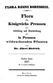 Flora regni Borussici: flora des Königreichs Preussen oder Abbildung und Beschreibung der in Preussen wildwachsenden Pflanzen, Band 5