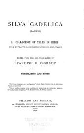 Silva gadelica (I-XXXI): a collection of tales in Irish with extracts illustrating persons and places, Volume 2