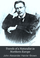 Travels of a Naturalist in Northern Europe: Norway, 1871, Archangel, 1872, Petchora, 1875, Volume 2