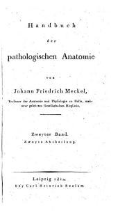Handbuch der pathologischen Anatomie: Band 2