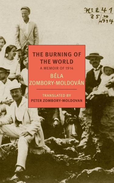 Download The Burning of the World Book
