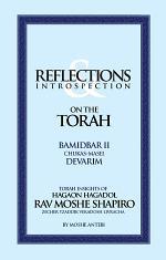 REFLECTIONS & INTROSPECTION:ON THE TORAH | BAMIDBAR II - DEVARIM
