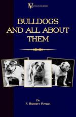 Bulldogs and All about Them (a Vintage D