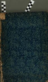 In antiquam tabulam aheneam decurionum nomina et descriptionem continentem et in privato ... Vinc. Mar. Riccardii ... museo adservatam observationes