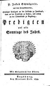 Predigten auf alle Sonntage des Jahrs: Jahrgang 1 (1799)