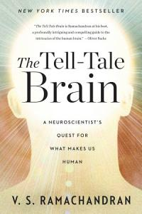 The Tell Tale Brain  A Neuroscientist s Quest for What Makes Us Human PDF