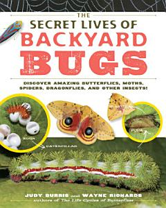The Secret Lives of Backyard Bugs PDF