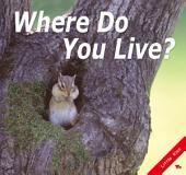 Where Do You Live?: Little Kiss39