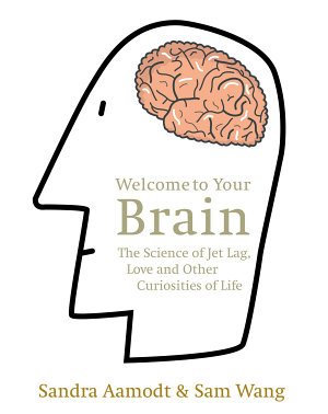 Welcome to Your Brain PDF