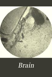 Brain: A Journal of Neurology, Volume 20
