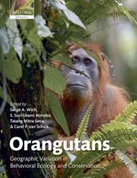 Orangutans Book PDF