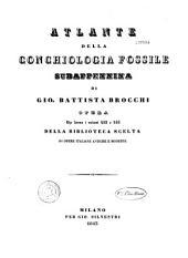 Conchiologia fossile subappennina