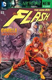 The Flash (2011- ) #13