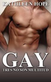 Gay: Tres no son multitud