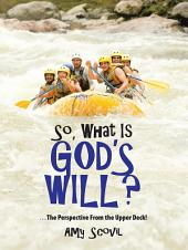 So, What Is God's Will?: ...The Perspective From the Upper Deck!