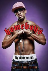Homeboys: Gay Urban Erotica: Gay Urban Erotica