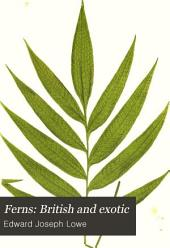 Ferns: British and Exotic: Volume 2