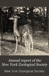 Annual Report of the New York Zoological Society: Volume 9