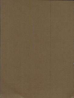 Caravaggio Book