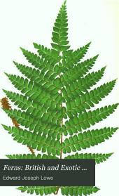 Ferns: British and exotic ...