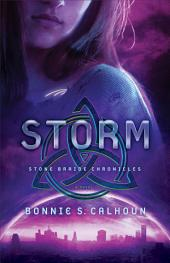 Storm (Stone Braide Chronicles Book #3): A Novel