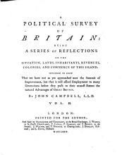 A Political Survey of Britain PDF