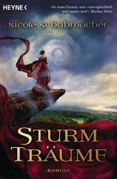 Sturmträume: Roman