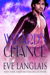 Wizard's Chance: The Realm #1