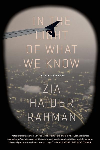 Download In the Light of What We Know Book