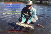 Gibbon River - Yellowstone National Park, USA: Rocky Mountain Fishing Journals