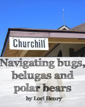 Churchill: Navigating Bugs, Belugas and Polar Bears
