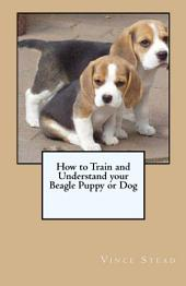 How to Train and Understand Your Beagle Puppy Or Dog